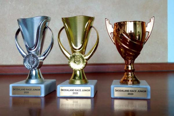 Krásné poháry jsou připraveny pro vítěze jednotlivých kategorií při 3.rocníku našeho závodu.